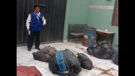 Chincha: decomisan más de una tonelada de carne en mal estado