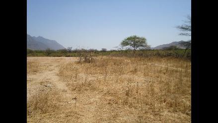 Proyectos de riego en costa y sierra aportan 200 mil hectáreas nuevas