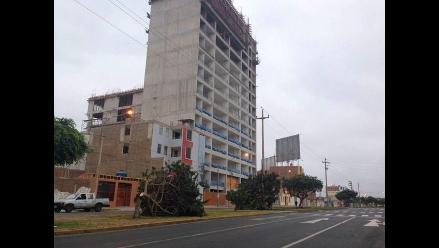 Denuncian tala indiscriminada de árboles en Trujillo