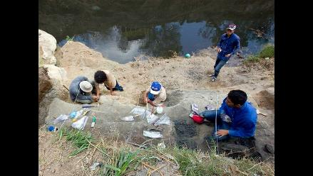 Corea del Sur: Hallan el fósil completo de un pequeño dinosaurio
