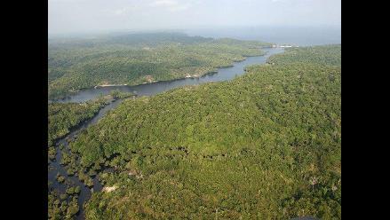 Brasil: La deforestación en la Amazonía cayó un 18 % el año pasado
