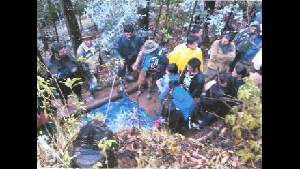 Julcán: agricultor queda en coma tras caerle árbol en la cabeza