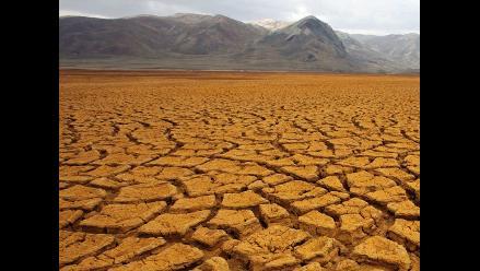 FAO: Urge cambiar la forma cómo actuamos frente al cambio climático