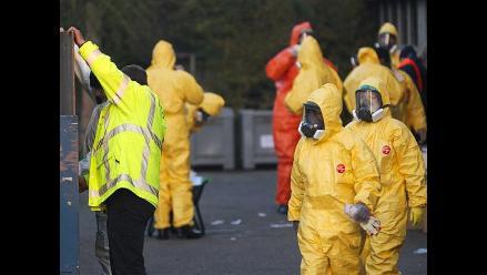 Gripe aviar: confirman segundo brote en Alemania