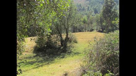 Quebrada Ilish Pichacoto el mejor espacio para explorar en Junín
