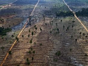 Plantean mejorar uso de recursos naturales en la región