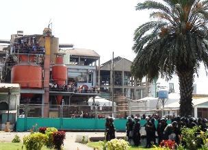 Chiclayo: sala ratifica administración judicial de empresa AgroPucalá
