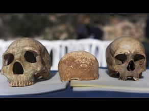Israel: cráneo arroja datos sobre los primeros humanos europeos