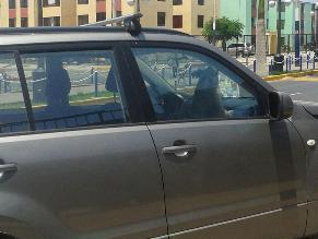 Chorrillos: Propietaria deja mascota en auto bajo el sol