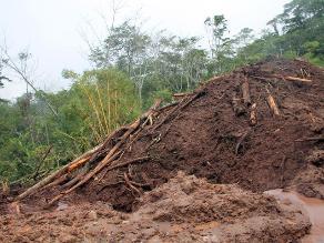 Suspenden búsqueda de posibles víctimas en vía Tarapoto - Yurimaguas