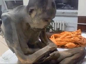 Hallan momia de monje budista en postura de