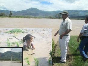 Amazonas: río Marañón inunda terrenos de arroz