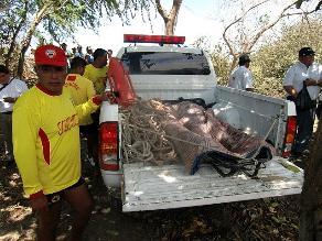 Chiclayo: niña fallece ahogada en piscina del recreo