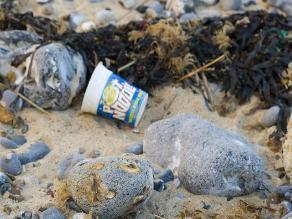 Calculan que cada año se vierten 8 toneladas de plástico al mar