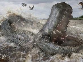 Mordida del Purussaurus era más fuerte que la del Tiranosaurus Rex