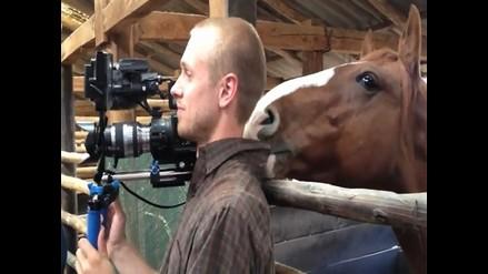 YouTube: caballo le hace la vida imposible a un camarógrafo