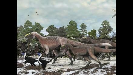 Confirman vínculo entre enfríamiento terrestre y el fin de los dinosaurios