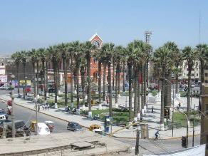 Retiran doce palmeras de la Plaza de Armas de Chincha