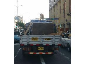 Cercado: llevan a perro sobre carga que transporta camioneta