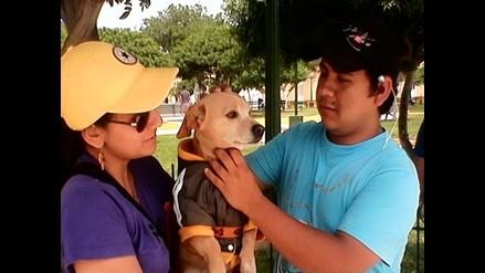 Arequipa: campaña de vacunación canina inician en establecimientos de salud