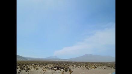 Arequipa: agua y pastizales contaminados por cenizas de volcán Ubinas