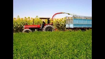 Bonistas conforman alianza para cobrar deuda agraria