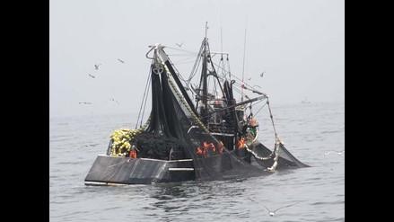 Produce suspende pesca de anchoveta por cinco días