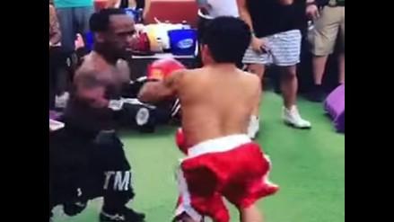 Mini luchadores imitan a Mayweather y Pacquiao en 'Pelea del Siglo'