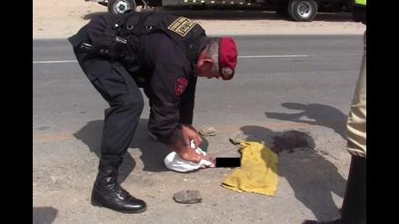 Lambayeque: arrojan feto en carretera Panamericana Norte