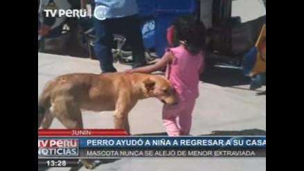 Perro resguardó a niña perdida hasta llegada de la Policía