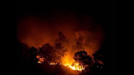 Puerto Rico: varias reservas naturales sufren daños por incendios