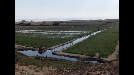 Apurímac: reforzarán represas para garantizar riego de campos agrícolas
