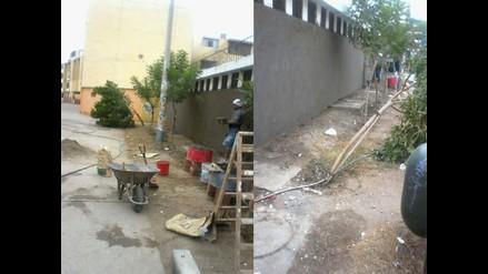WhatsApp: Talan árbol para realizar obras en colegio