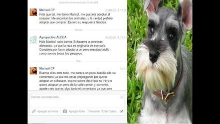 Facebook: mujer quiso adoptar un schnauzer y se lo negaron por ser peruana