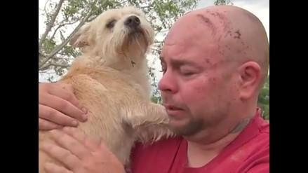 YouTube: Hombre lloró de felicidad al reencontrarse con su perro