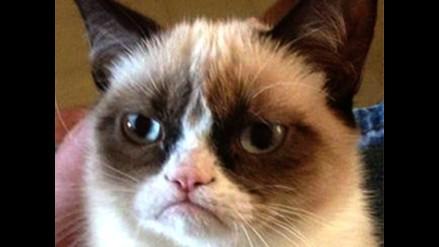 Grumpy Cat: Aventuras de la gata gruñona llegarán al cómic