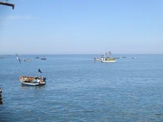 Tumbes: pescadores exigen al Gobierno Regional vigilancia en altamar