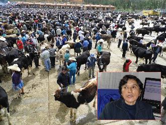 Áncash: Trabajadores de Subregión denuncian que gerenta no atiende