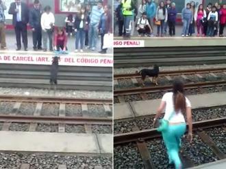 Metro de Lima: Mujer fue irresponsable por salvar a perro de vías del tren