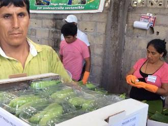 Productores del Huallaga recibirán capacitación empresarial
