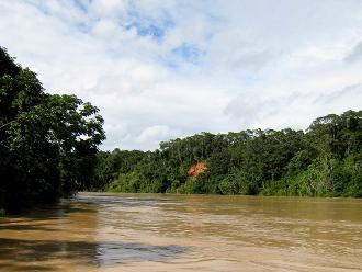 Loreto: establecen Área de Conservación Regional Maijuna Kichwa