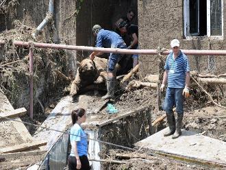 Georgia: tigre huido de zoológico tras inundación mata a una persona