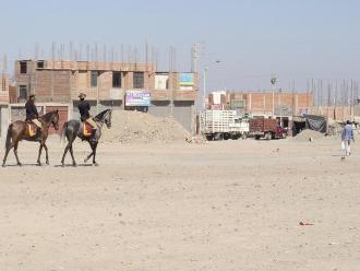 Tacna: patrullaje en las calles se realiza con caballos
