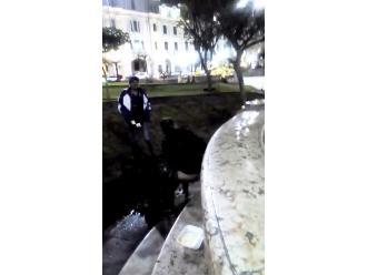 Centro de Lima: sujetos usan de la Plaza San Martín de baño público