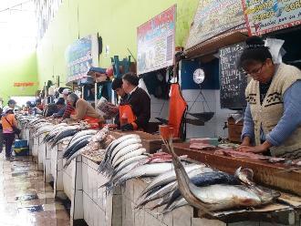 Masiva compra de pescado en la víspera de Día Nacional del Cebiche