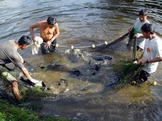 Fondepes otorgó créditos a acuicultores en el Vraem