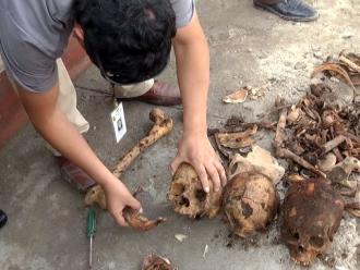 Hallan restos fósiles cuando colocaban poste de luz en Chincha