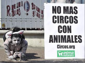 México: dueños de circos no podrán conservar animales para espectáculo
