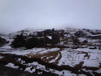 Apurímac: nevadas afectan sembríos y pastizales de provincia de Grau