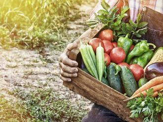 Estas verduras no son tan buenas como creías si las consumes en exceso